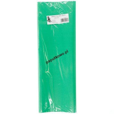 Bibuła gładka zielona gładka zielona 700 mm x 500 mm (23)