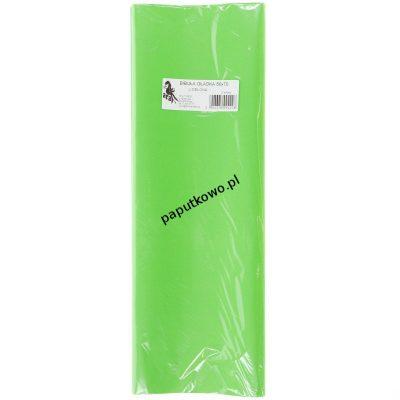 Bibuła gładka zielona jasna gładka zielona 700 mm x 500 mm (22)